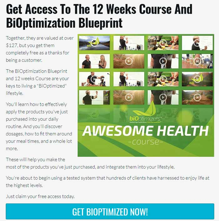 masszymes 12 week course