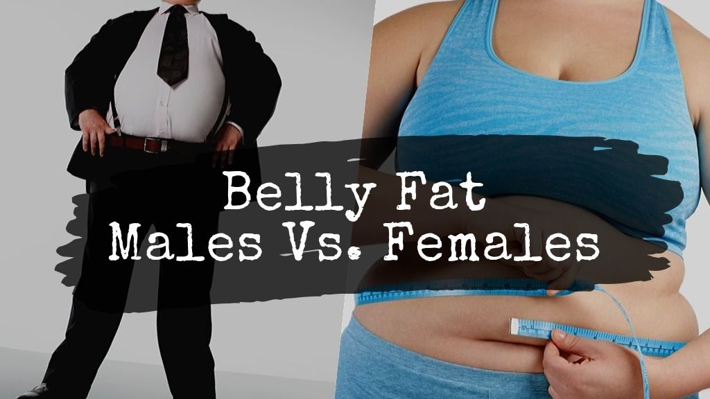 what causes belly fat in males vs females